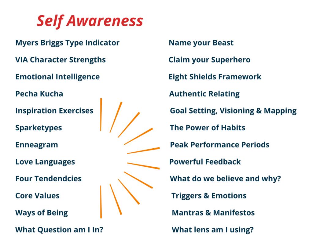 Self Awareness (2)